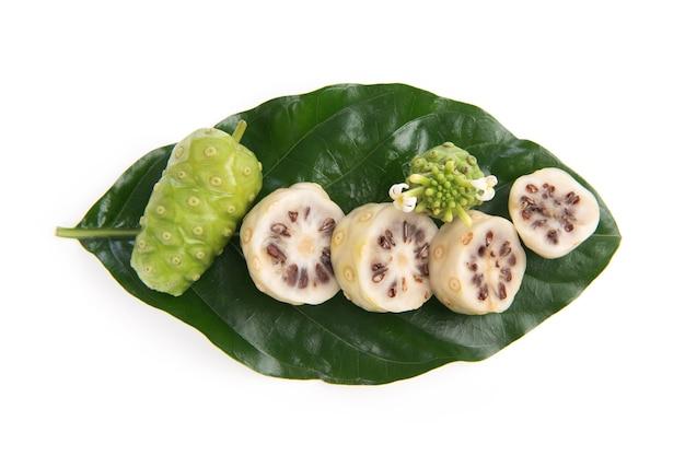 Плоды нони на ветке зеленые листья, изолированные на белом фоне. вид сверху, плоская планировка.