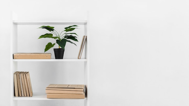식물을 가진 북유럽 스타일의 책장