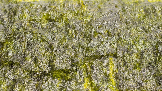 Nori seaweed as a background. top view.