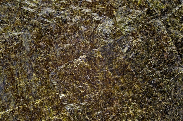 Лист водорослей нори