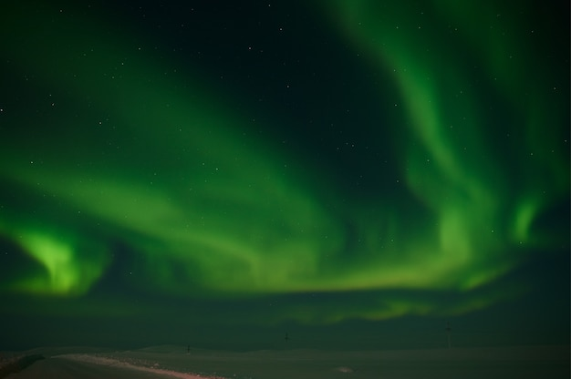 Northern light on the silent field before sun rise.
