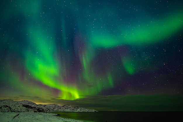 Northern lights (aurora borealis) in the sky over the barents sea