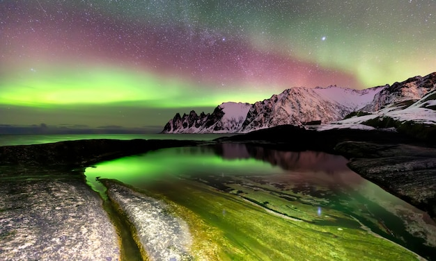 Northern lights over the ersfjord beach and norwegian sea. senja island at night, norway, europe
