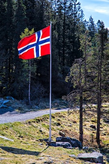 Norwegian flag on flagstaff at road in forest