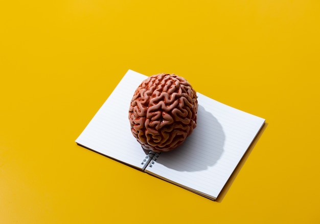 Ноутбук и мозг на желтой поверхности