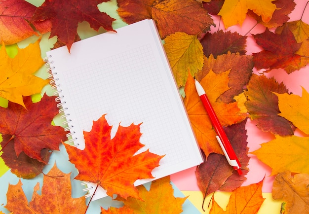 Notebook on the autumn table