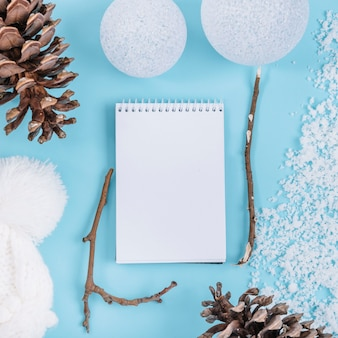 Notebook between snow and snags