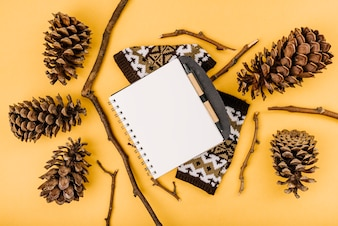 Notebook between twigs and snags