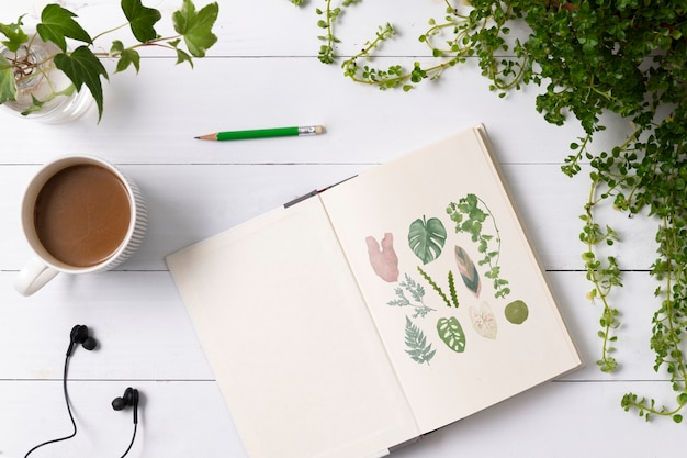 Notebook flat lay in plants with hand drawn illustrations