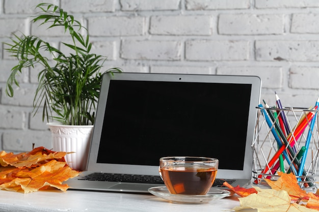 Notebook, laptop, flowers and autumn leaves. top view on white wall. autumn flat lay. mock up for art work with workplace