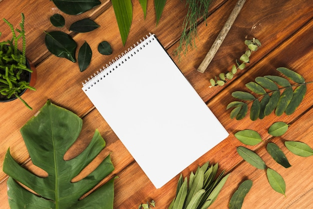 Notebook and leaves on table