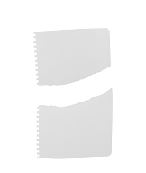 Notebook lined paper torn on white background