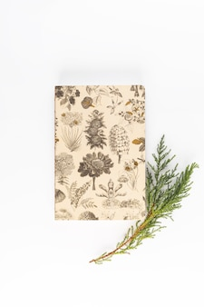 Notebook near coniferous branch