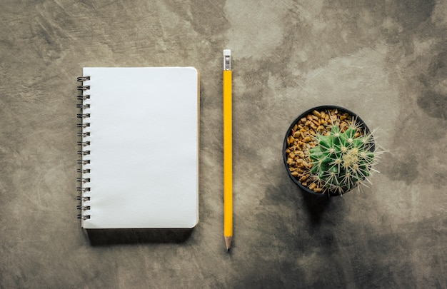 Notebook pencil and cactus on cement board view from above.