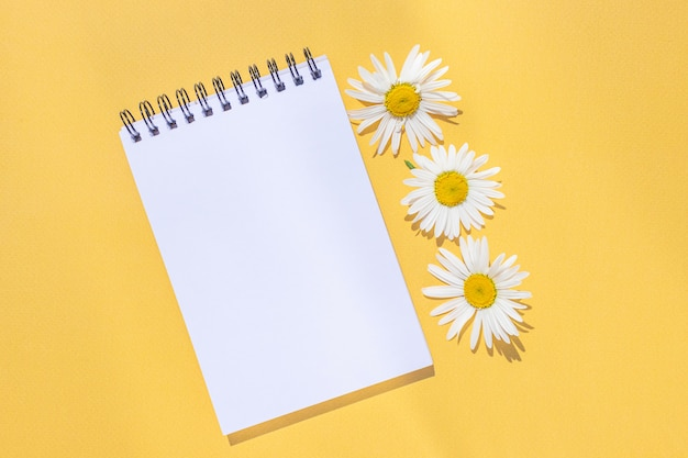 Notebook on a spiral with an empty sheet and chamomile flowers on a bright yellow background.