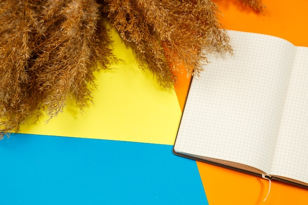 A notebook with clean white sheets for recording with a pen on a colored background, wrinkled dry branches nearby. record, report, message, letter. place for text