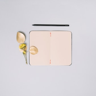 Notebook with flower branch on light table