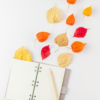 Notebook with flying dried flowers and leaves