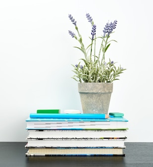 Notebooks with white pages and ceramic pots with plants on a black table