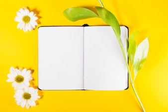 Notepad and plants