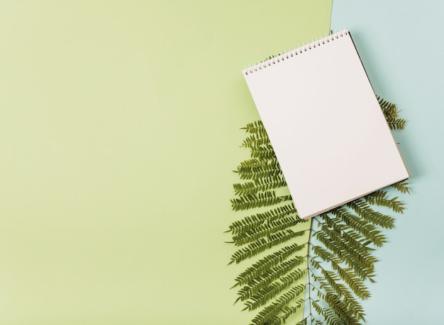 Notepad on fern sprig