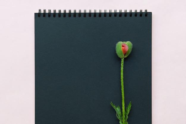 Блокнот для заметок и бутон цветка мака, похожий на женский орган влагалища.