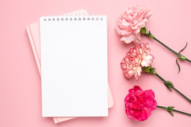 Notepad and pink carnation flower on pink background
