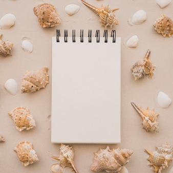 Notepad and seashells on the beach
