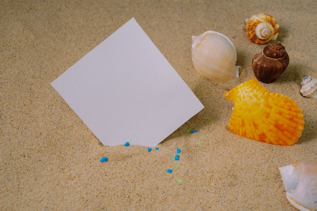 Notepad with shell on sand background or on the beach of sea using wallpaper for education photo