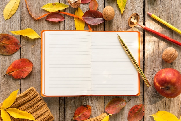 Notes in a notebook on a beautiful autumn morning
