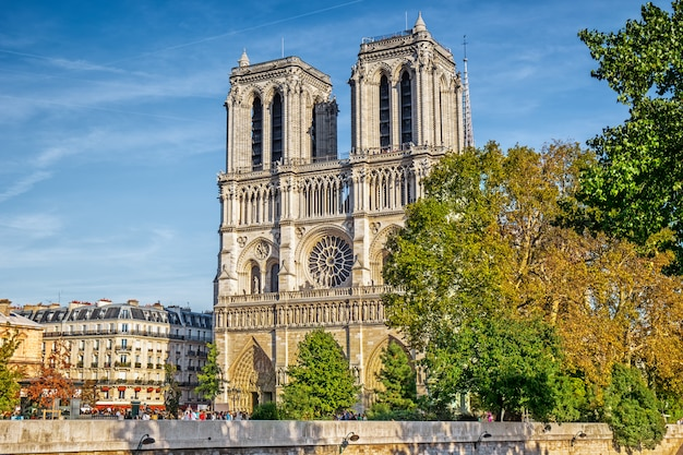 Собор нотр-дам в париже, франция
