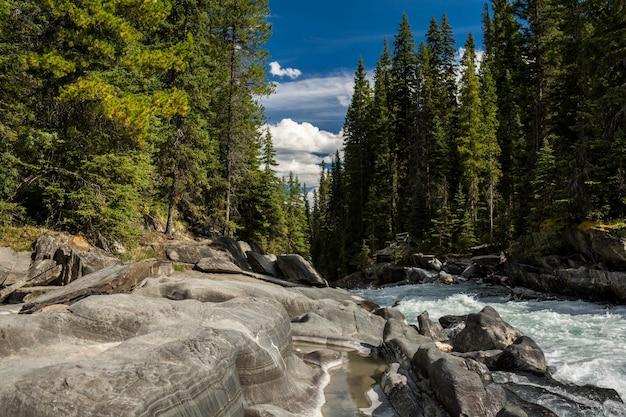 Нума-крик. живописный вид на горы на реку кутеней, национальный парк кутеней
