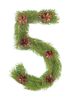Number 5 - made of christmas fir tree on a white isolated