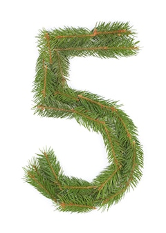 Number 5 - made of christmas fir tree on a white space