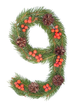 Number 9 made of christmas fir tree isolated