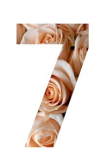 흰 벽에 7 번 장미 꽃,