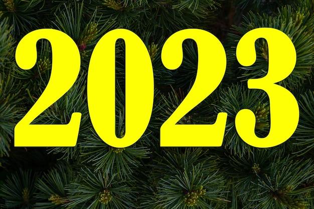 Числа 2023 на фоне крупным планом сосновые ветки, естественный новогодний фон. красивая еловая ветка с хвоей и молодыми побегами в природе. предпосылка ветвей рождественской елки.