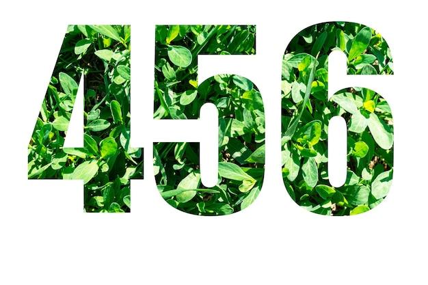 白い背景に分離された緑の草からの番号456。デザインの要素。