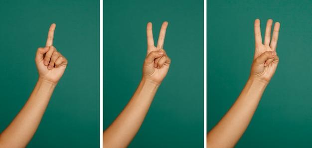 Numbers hand gestures