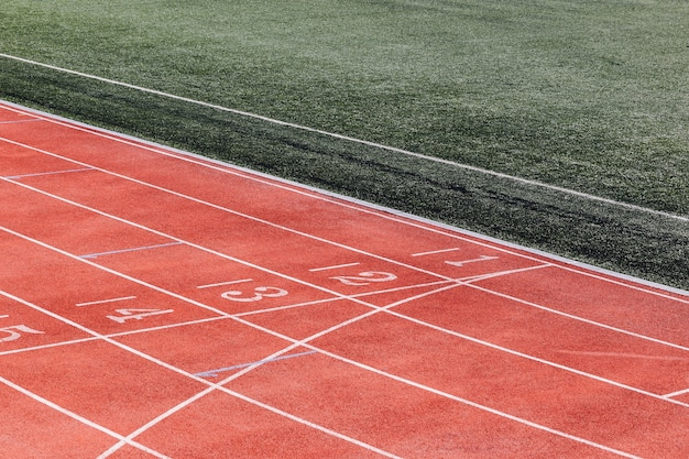 Numbers at the running track start line