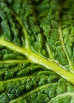 Primo piano nutriente della composizione di struttura dell'alimento
