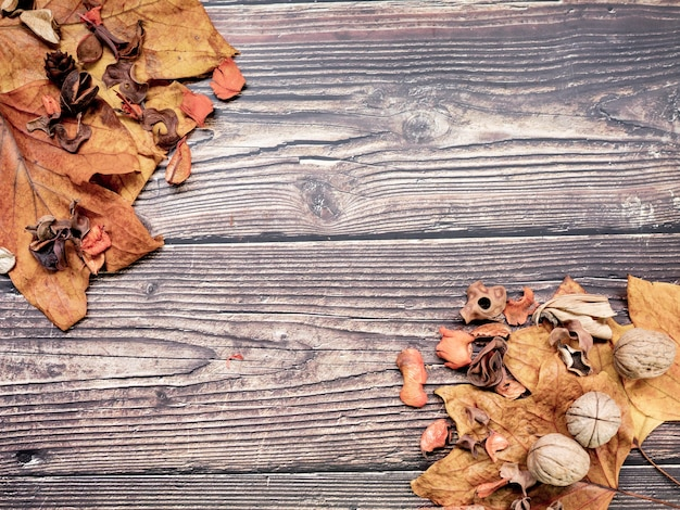 Nuts dry leaves wood, autumnal concept