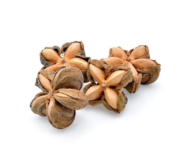 Nuts incas , sacha inchi peanut seed on white background