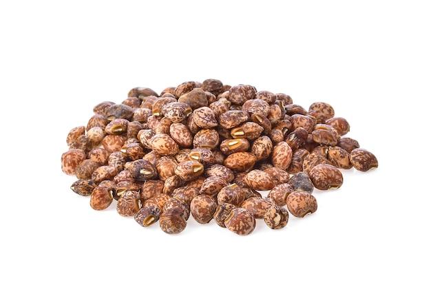 白い背景で隔離のナッツ種子