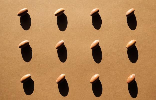 Oak acorns brown paper background cast deep shadow.
