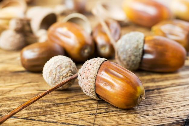 Oak acorns on wooden rustic background. autumn concert. selective focus