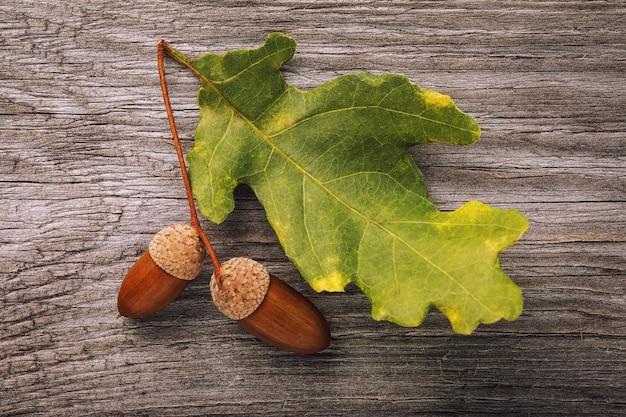 木の板の上面図にドングリとオークの葉