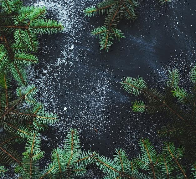 黒の背景にオークの木の枝