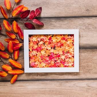 Oaken leaves in white frame