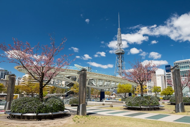 Oasis21 at spring in nagoya